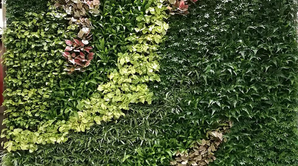 华美达酒店植物立体绿化案例