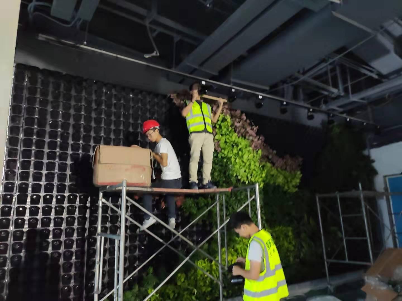 立体绿墙种植盒