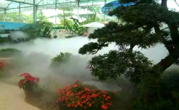 新疆红山公园景观造雾案例