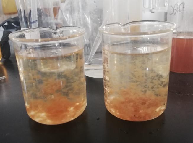 焦化廢水脫色處理