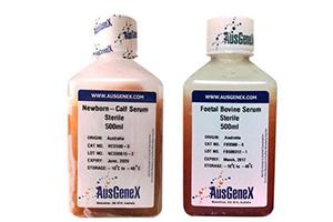 AusGeneX 特级胎牛血清 FBS500-S