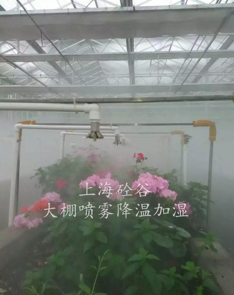 大棚花卉贝斯特全球最奢华网页加湿