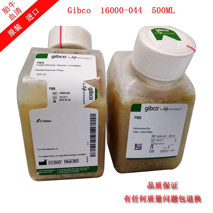 Gibco 16000-044 北美(原装)胎牛血清