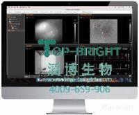 Inscopix数据分析软件(IDPS)