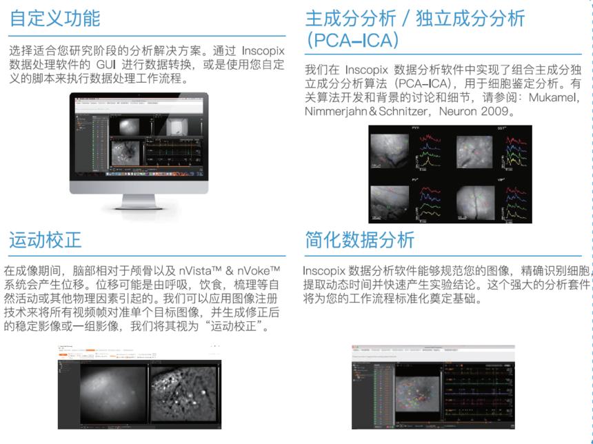Inscopix数据分析软件