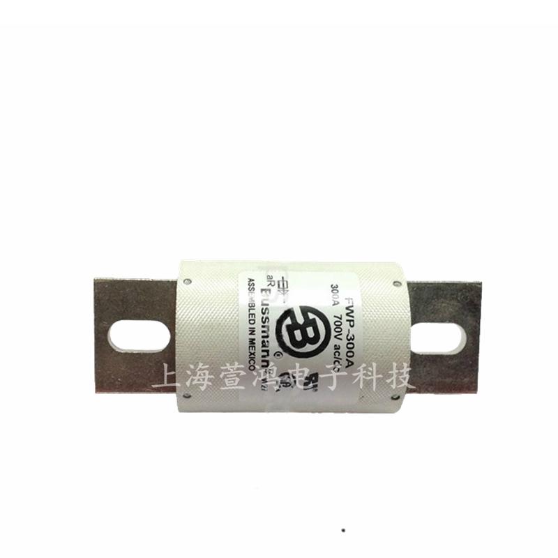 巴斯曼熔断器 FWP-300A