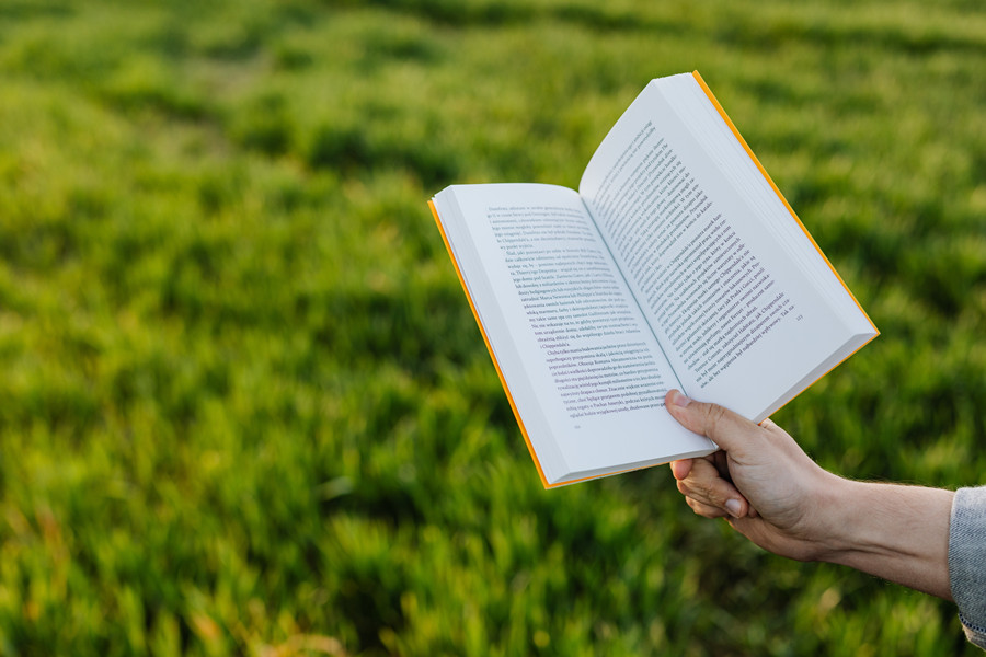 anonymous-person-reading-book-on-green-meadow-4218580_副本.jpg