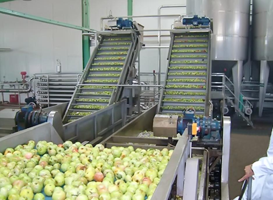 苹果-梨加工成套生产线