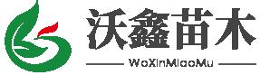 泰安沃鑫苗木有限公司