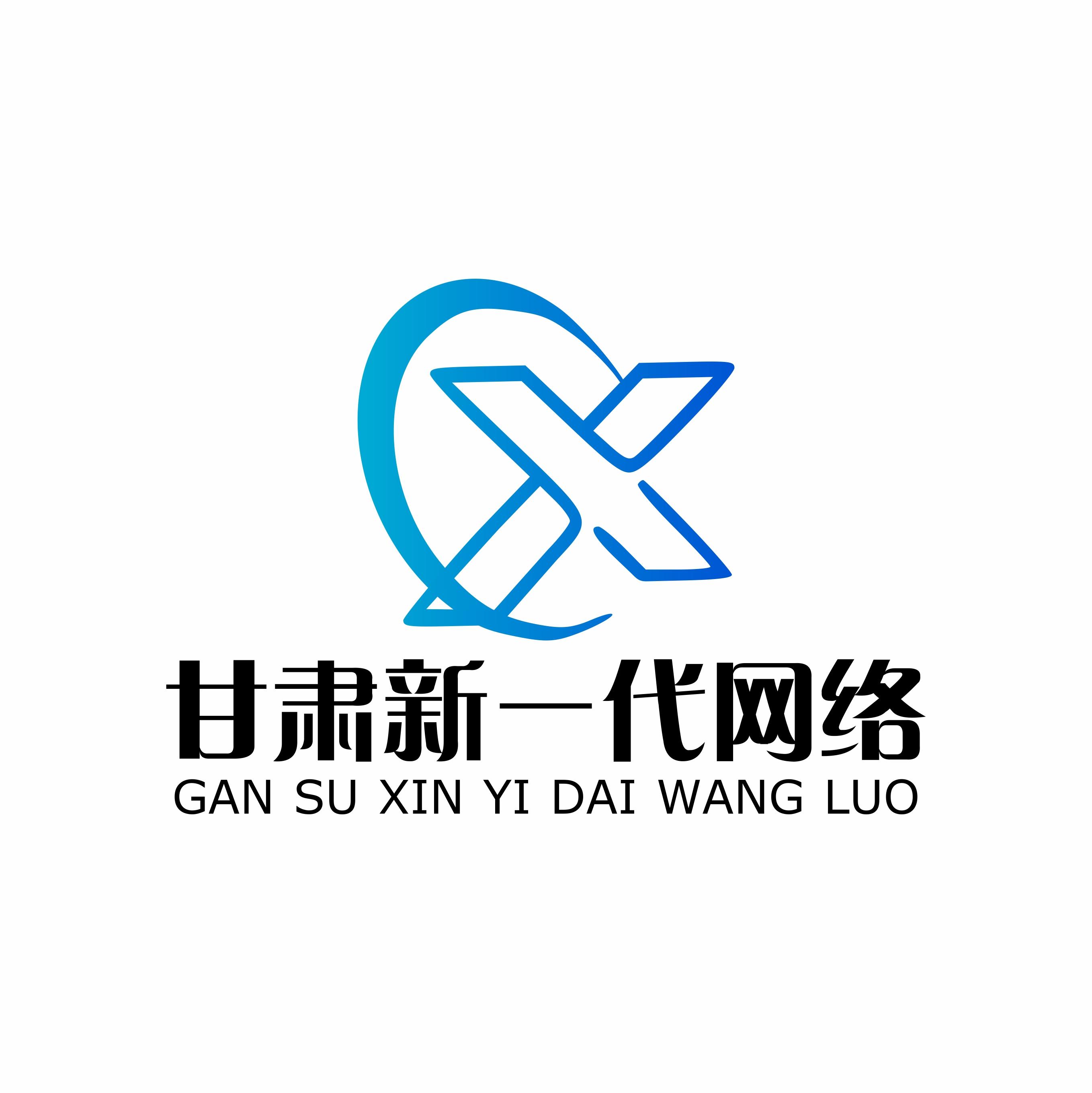 甘肃新一代网络科技有限公司