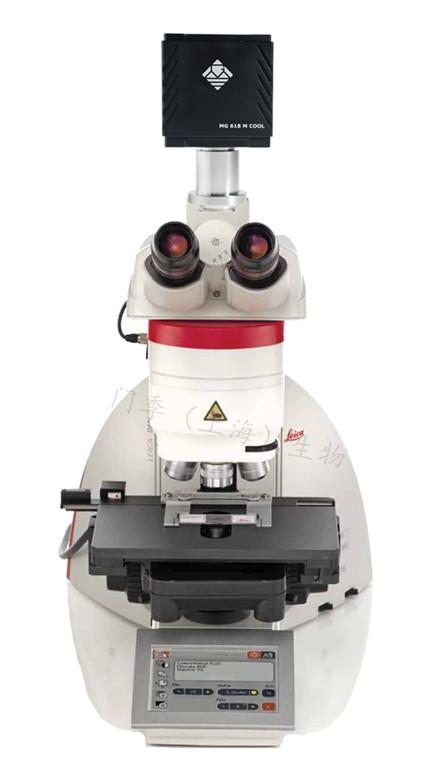 DM4 DM6生物显微镜