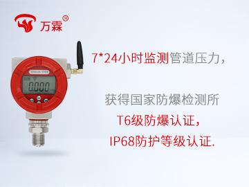 防爆型NB-iot壓力表