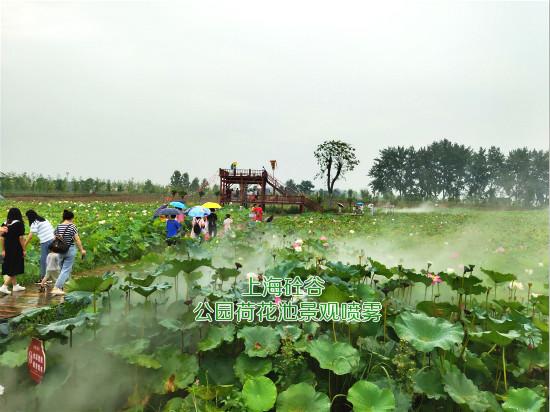 荷花池景观贝斯特全球最奢华网页