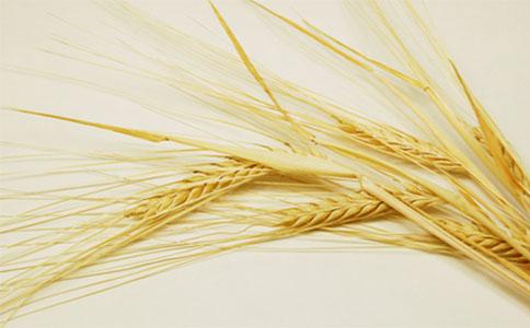 优质的小麦种子有利于增产