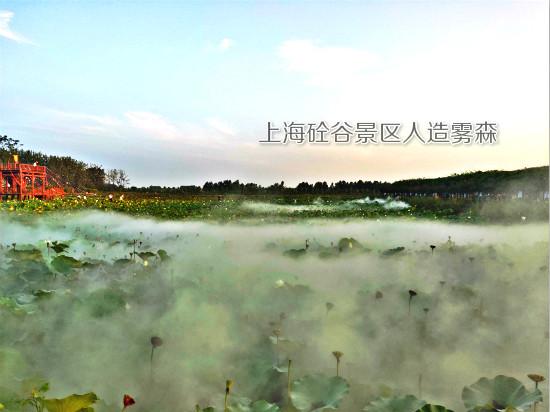 荷花池景观造雾