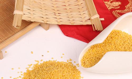 熬小米粥记住技巧,米油浓厚,粘稠又好喝