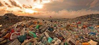 固体废弃物