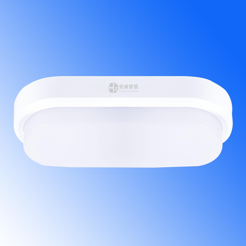 椭圆形吸顶灯 集中电源集中控制型消防应急照明灯具