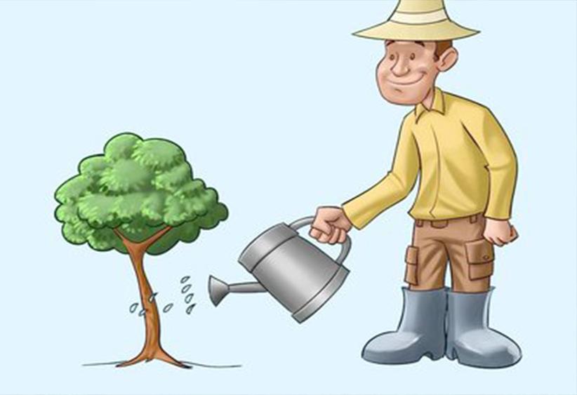 园林绿化的植物养护要点