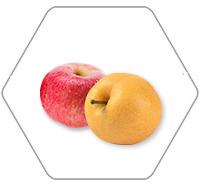 苹果制品的生产线加工方式是如何的?