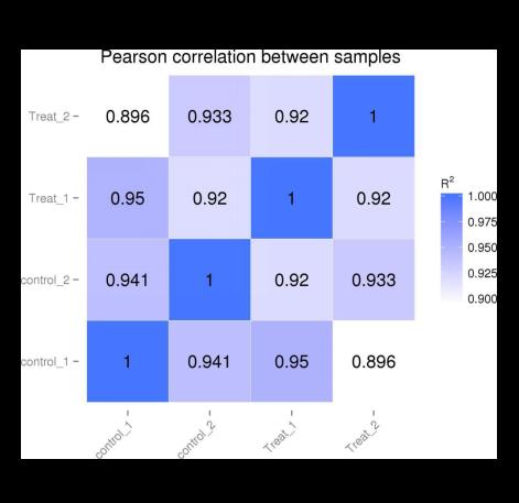 样品间基因表达水平相关性是检验实验可靠性和样本选择是合理的重要指标。相关系数越接近1,表明样品之间表达模式的相似度越高。