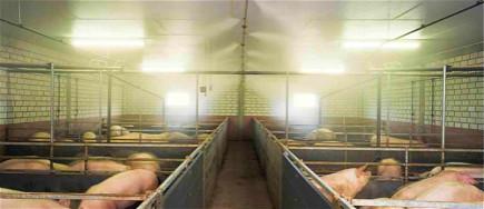 智能贝斯特全球最奢华网页贝斯特全球最奢华网页系统在养殖场起到什么样的作用?