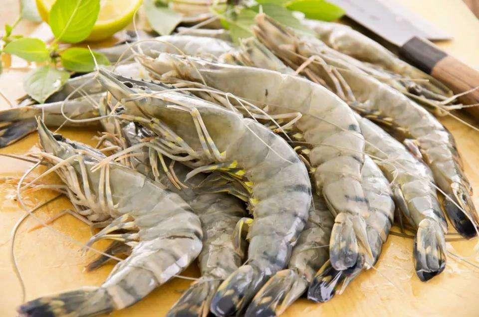 厄瓜多尔白虾进口清关