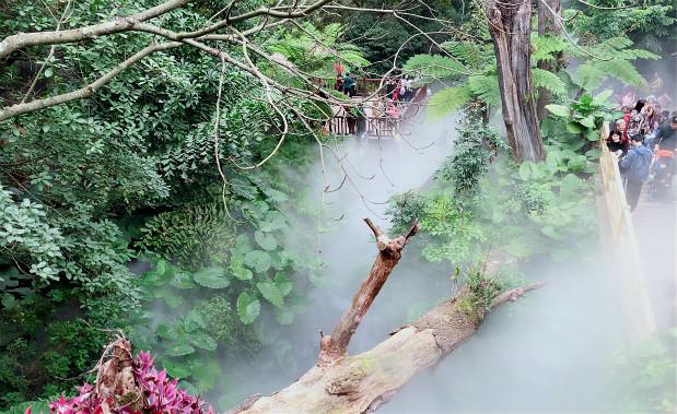 福建厦门植物园景观贝斯特全球最奢华网页案例