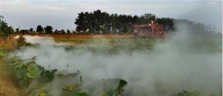 """荷花池景观造雾机,打造""""仙气缭绕""""的荷塘雾色"""