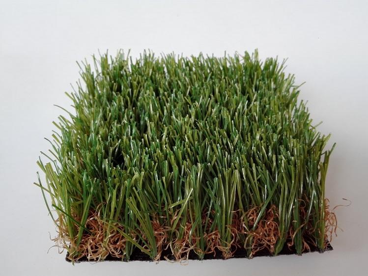 带茎带枯色直曲混织景观草坪