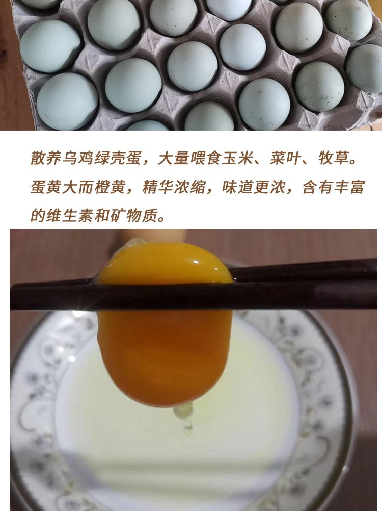 乌鸡绿壳蛋-_02.jpg