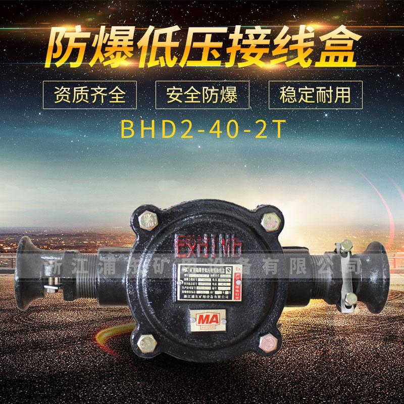 防爆低压接线盒-BHD2-40-2T