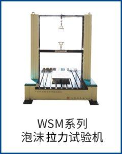 WSM系列泡沫拉力試驗機