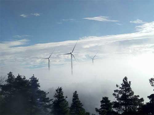 大风期风电机组