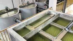 废水(含氟)处理