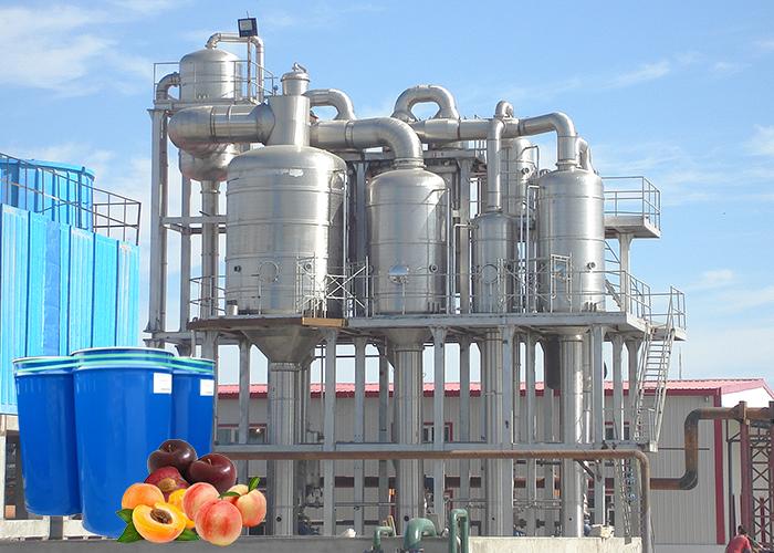 桃、杏、李加工生产线