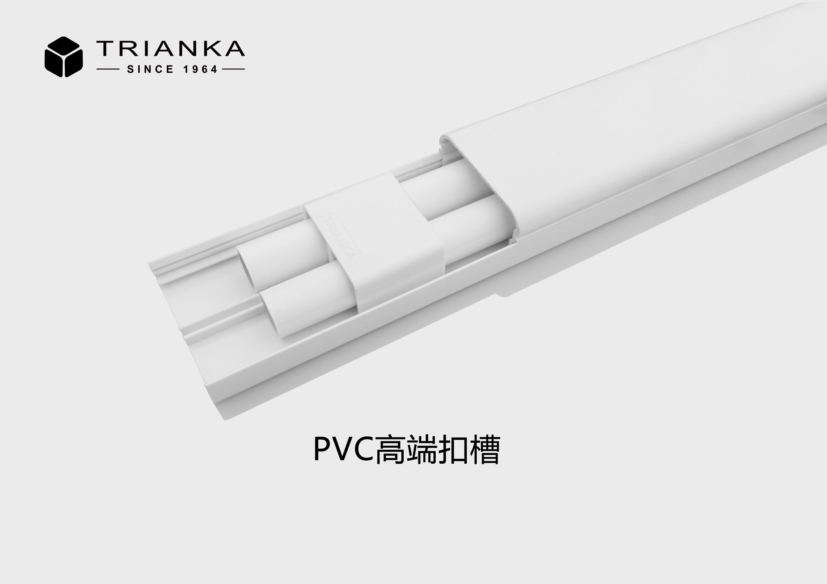 特瑞安卡PVC扣槽2.0M/根80*40
