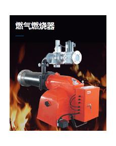 博惠燃烧器BHG250PBHG300P