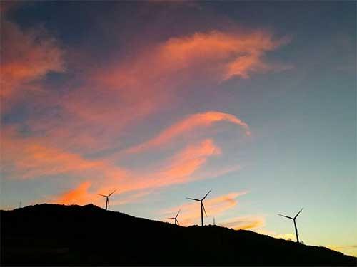 大型并网型风电机组