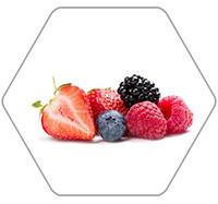 莓果类加工生产线