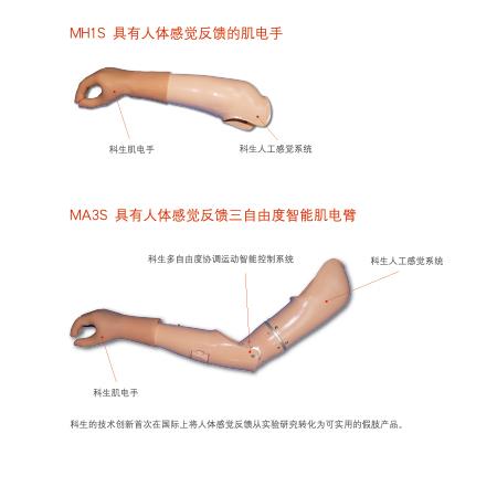具有人类感觉反馈的假肢系列产品