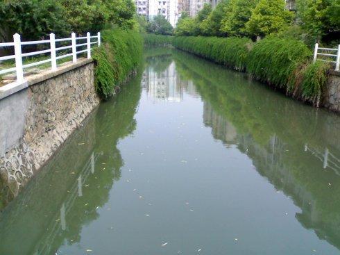 河道污染图.jpg