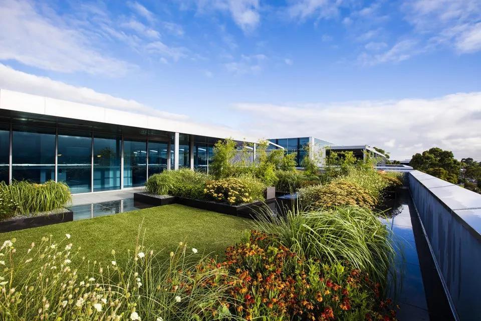 建筑第五立面-屋顶绿化