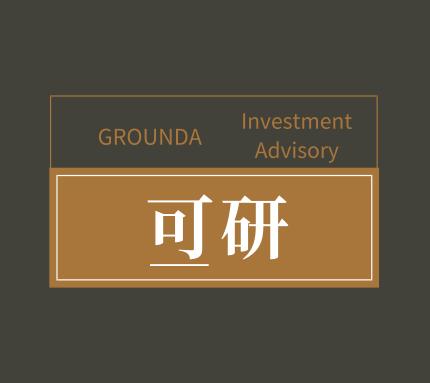 可研  Investment Advisory