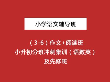 小学语文辅导班(3-6)