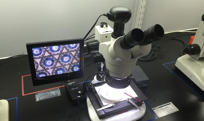 100X 顯微鏡