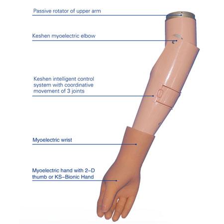 Keshen Intelligent Myoelectric Arm