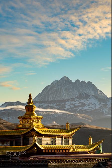 藏语是世界第二大高水平的语言