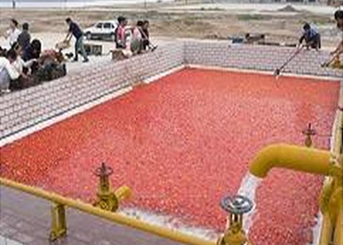 番茄加工生产线