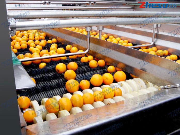 橙、柠檬、鲜柚加工系统工程.05